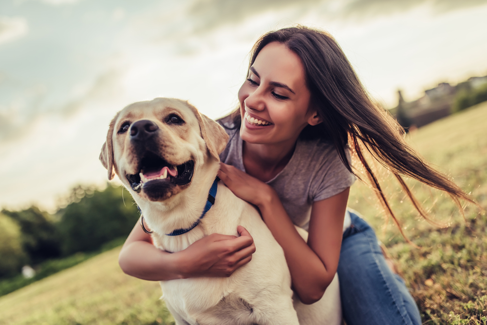 croquette bio chien